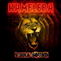 Vibrasound – Kameleba [160kbps]