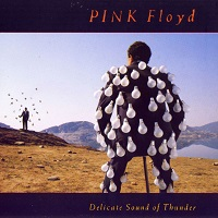 Delicate Sound Of Thunder – Pink Floyd [320kbps]