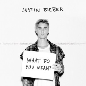 What Do You Mean? [CD Single] – Justin Bieber [320kbps]