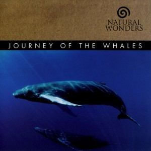 Journey of the Whales – Natural Wonders [320kbps]