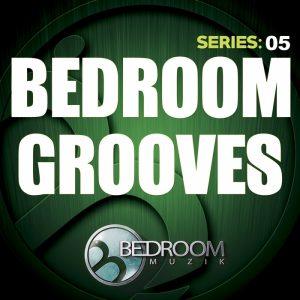 Bedroom Grooves Series: 05 – V. A. [320kbps]
