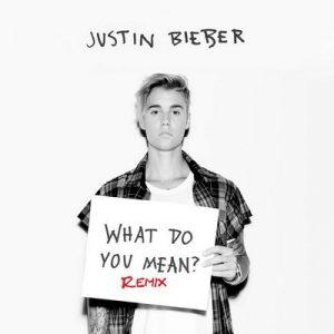 What Do You Mean (Remixes) – Justin Bieber [320kbps]