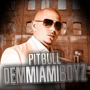 Dem Miami Boyz – Pitbull [320kbps]