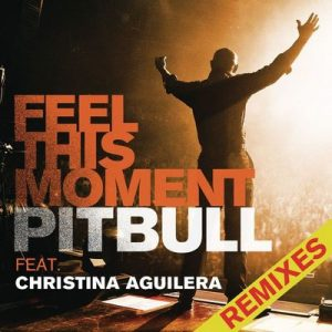 Feel This Moment: Remixes – Pitbull, Christina Aguilera [320kbps]