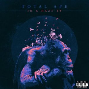 In a Haze – Total Ape [24bits]